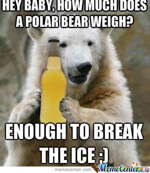 Drunk Polar Bear Funny Meme Picture