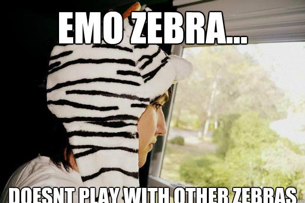 Funny Zebra Meme : Dude zebra just like a horse using tattoo funny