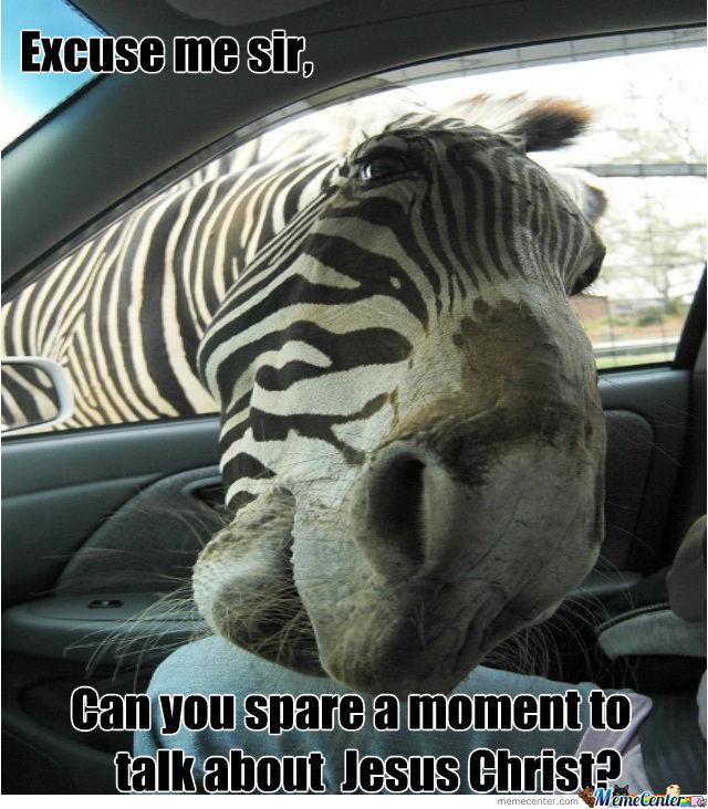 Funny Zebra Meme : Emo zebra doesnt play with other zebras funny meme image