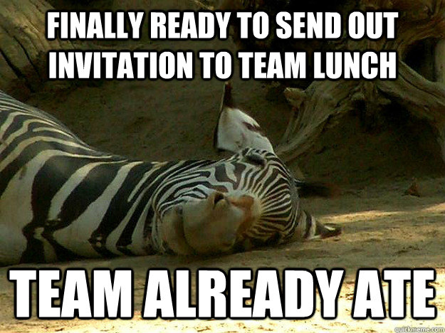 Finally Ready To Send Out Invitation To Team Lunch Funny Zebra