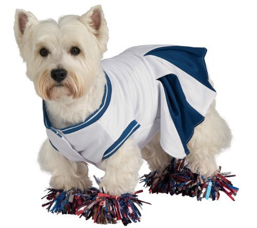 Funny Cheerleader Costume For Little Pet
