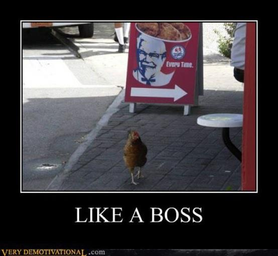 Funny Like A Boss Meme : Very funniest chicken meme pictures and photos