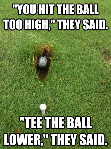 Funny Golf Meme Tee The Ball Lower They Said Image