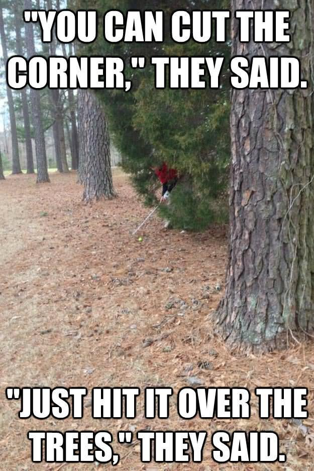 Funny Golf Meme You Can Cut The Corner They Said Image