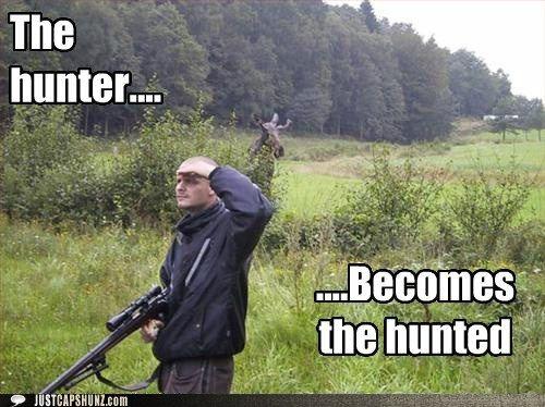 stalker приколы