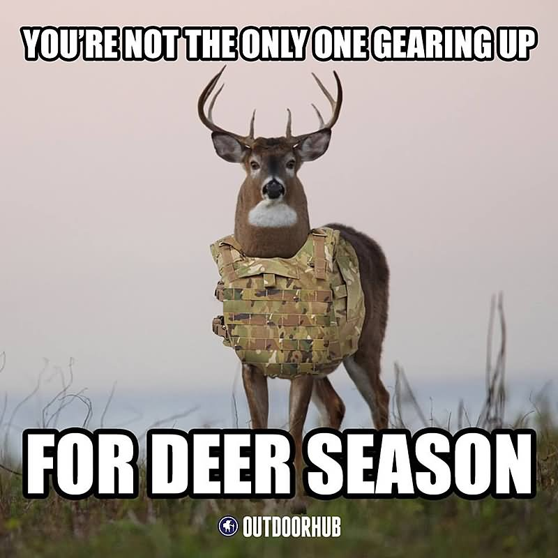 Funny Hunting Meme You Are Not The Only One Gearing Up Picture