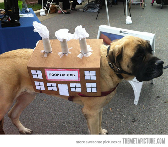 Funny Poop Factory Costume For Dogs