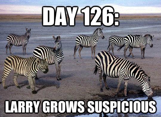 Funny-Zebra-Meme-Larry-grows-Suspicious-