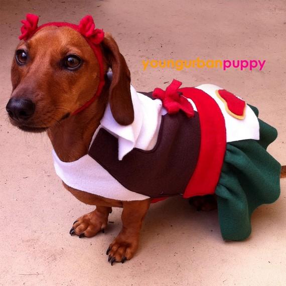 Heidi Oktoberfest Lederhosen Funny Costume For Pets