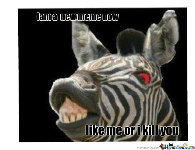 Funny Zebra Meme : Funny zebra meme pictures of all the time