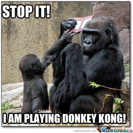 Funny donkey meme - photo#7