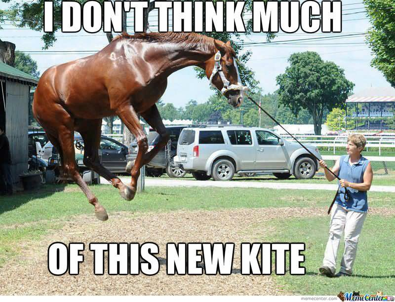 25 very funny horse meme photos and pictures for Where can i go horseback riding near me