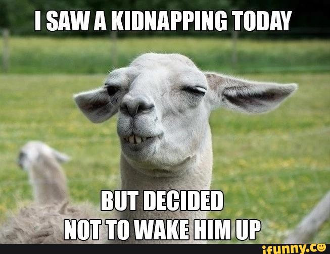 I Saw A Kidnapping Today Funny Goat Meme Image For Whatsapp