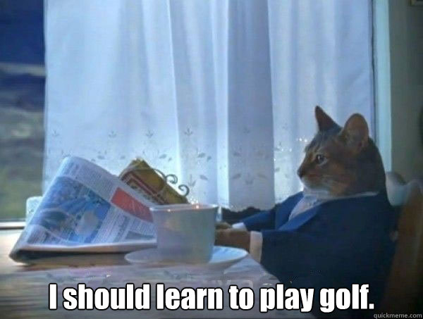 I Should Learn To Play Golf Funny Meme Image