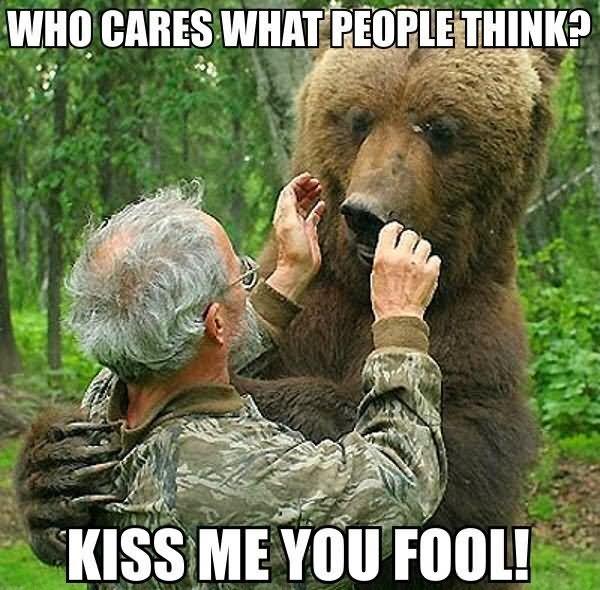 Kiss Me Meme Funny : Most funny bear meme pictures