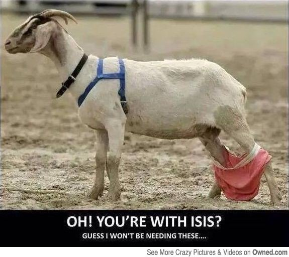 Oh You Are With Isis Funny Goat Meme Image