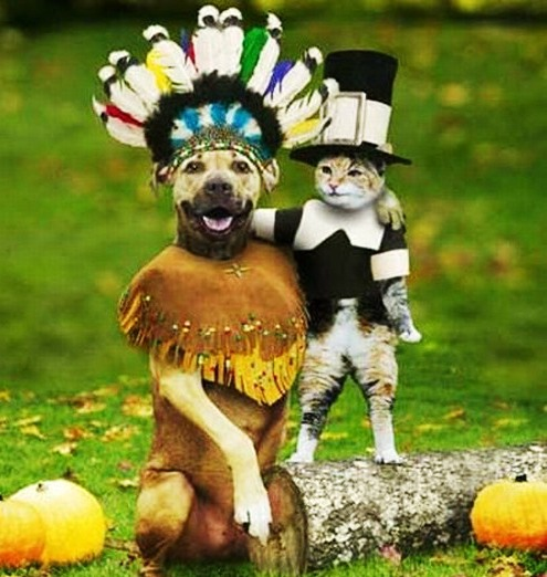 Pets In Halloween Costume In Funny Pose Picture