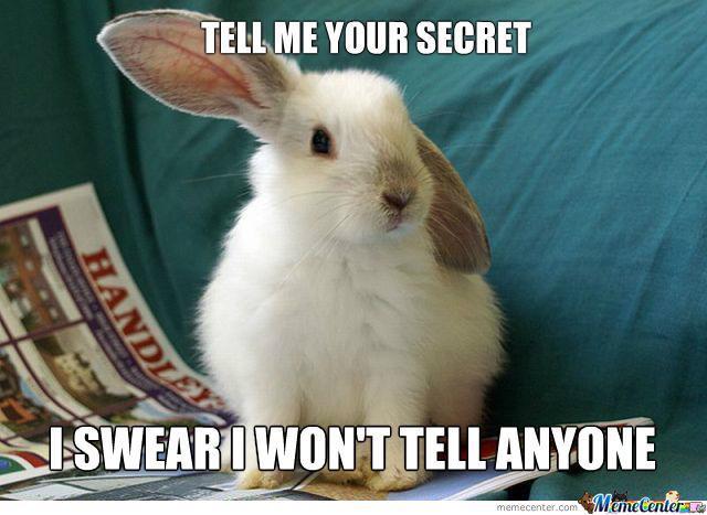 Pancake Bunny  Know Your Meme