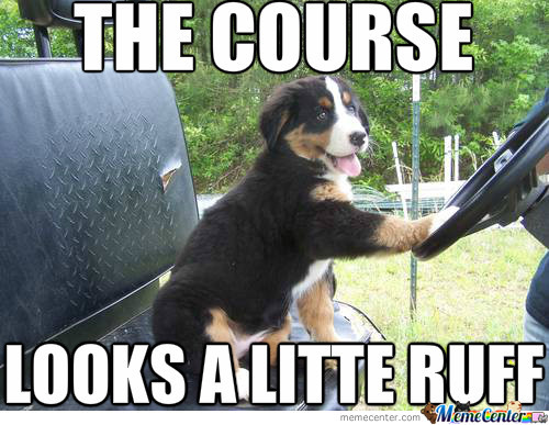 The Course Looks A Little Ruff Funny Golf Meme Image