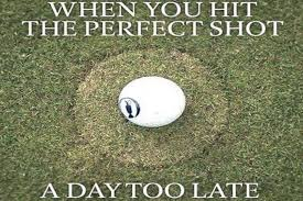 When You Hit The Perfect Shot Funny Golf Meme Image