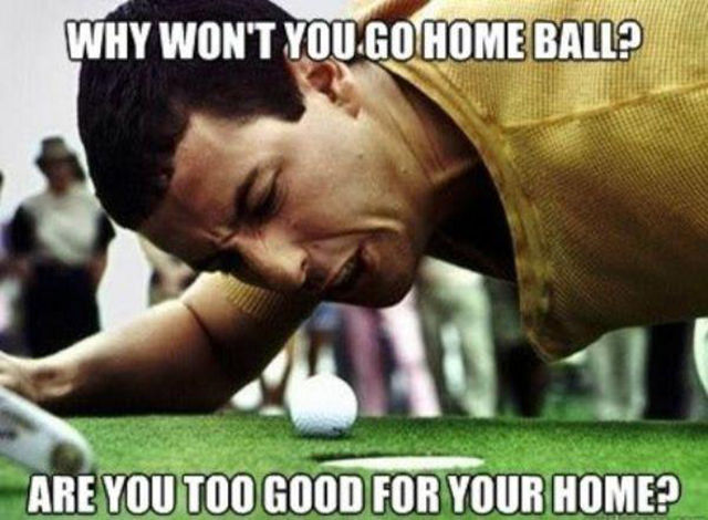 Why Won't You Go Home Ball Funny Golf Meme Image