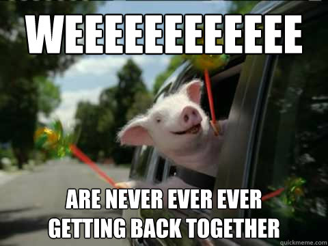 Funniest Meme Pictures Ever : Best friends funny pig meme picture for facebook