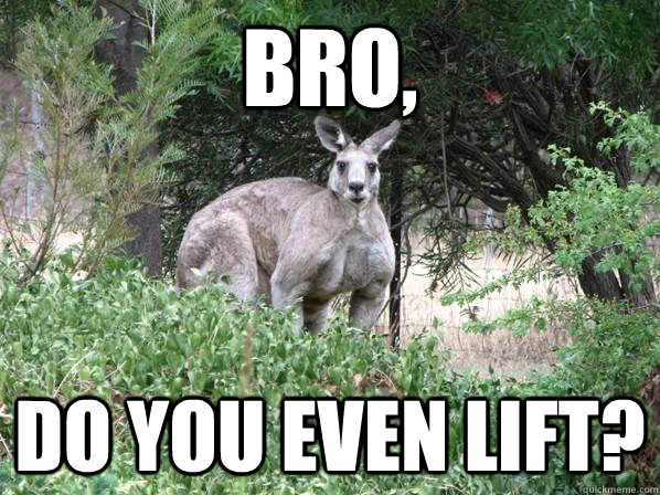 Do you even lift kangaroo - photo#7