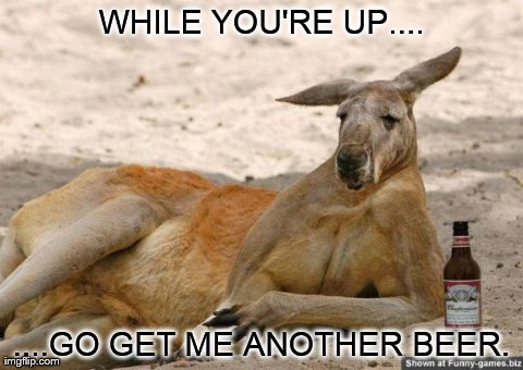 45 Most Funny Kangaroo...