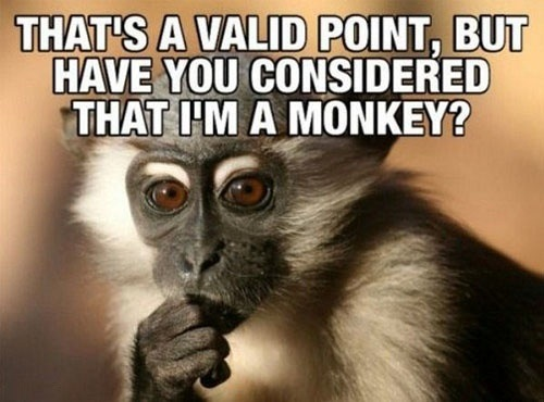 Funny Monkey Meme hats A Valid Point Image 35 very funny monkey meme photos and pictures,Dead Monkey Meme