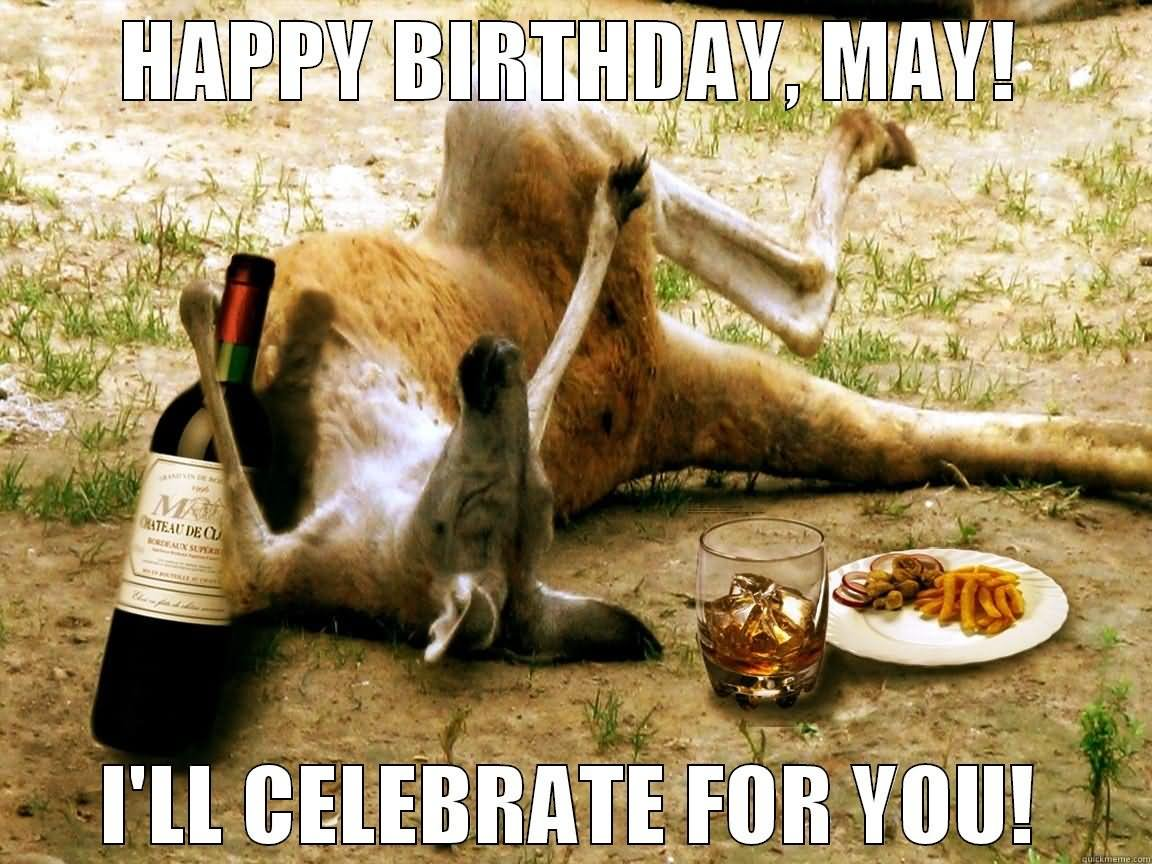 Funny Drunk Happy Birthday Meme : Most funny kangaroo meme photos and images
