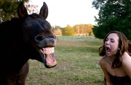 Horse And Girl Screaming Face Funny Photo For Facebook