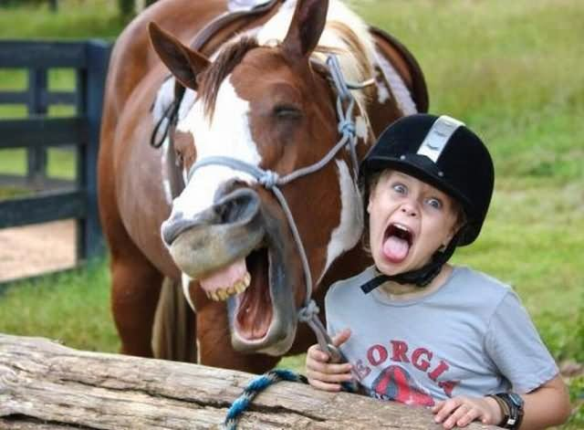 Horse Copying Little Boy Screaming Face Funny Picture