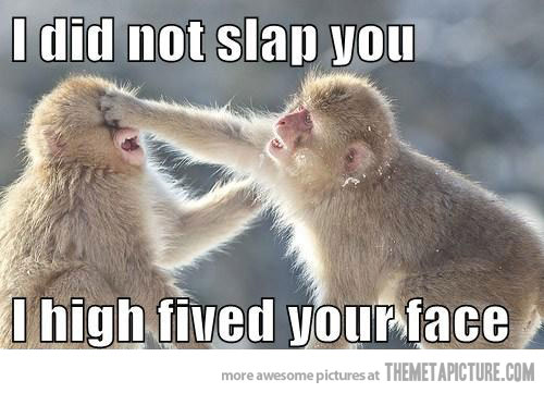 [Image: I-Did-Not-Slap-I-High-Fived-Your-Face-Fu...cebook.jpg]