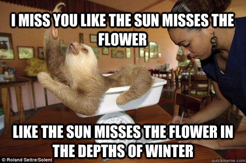 28 Very Funny Flower Meme Images Of All The Time