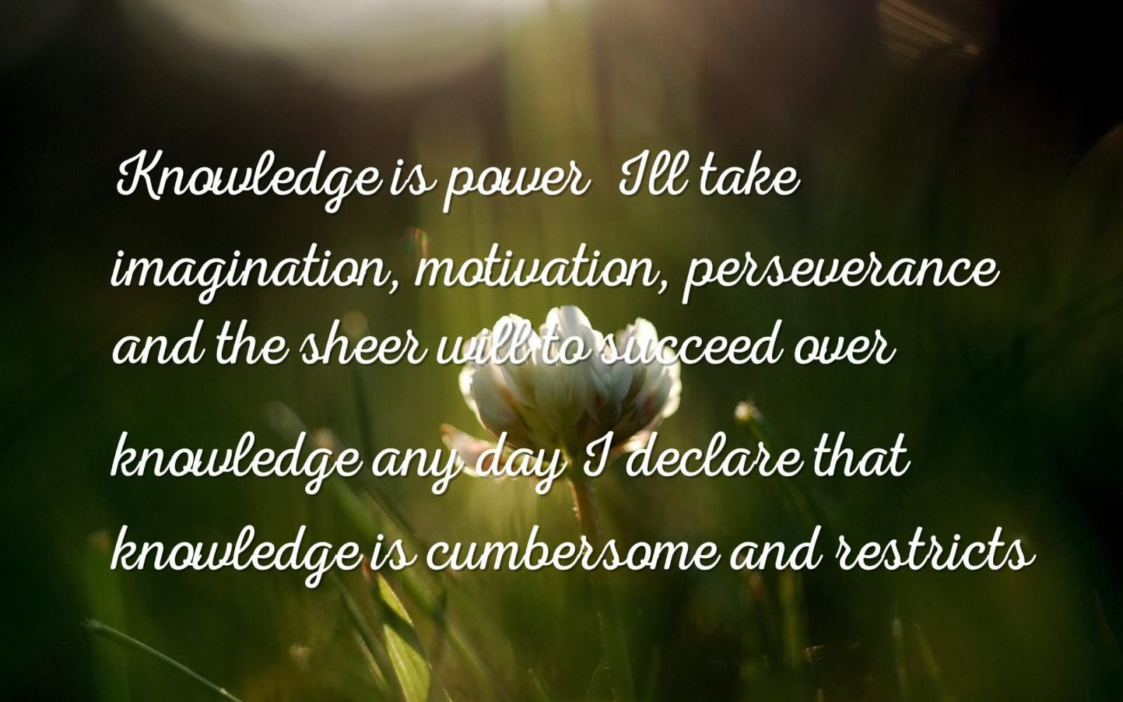 I'll take imagination, motivation, perseverance and the sheer will to  succeed over knowledge any day; I declare that knowledge is cumbersome and  restricts.