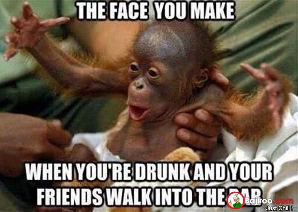 Funny Memes For Drunks : Most funny monkey meme pictures and images