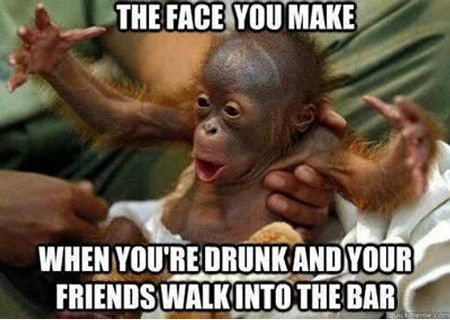 27 Funny Drunk Meme Pictures You Have Ever Seen