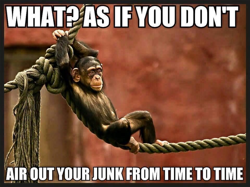 Funny Monkey Meme In Spanish : Comparing black people to monkeys has a long dark simian history