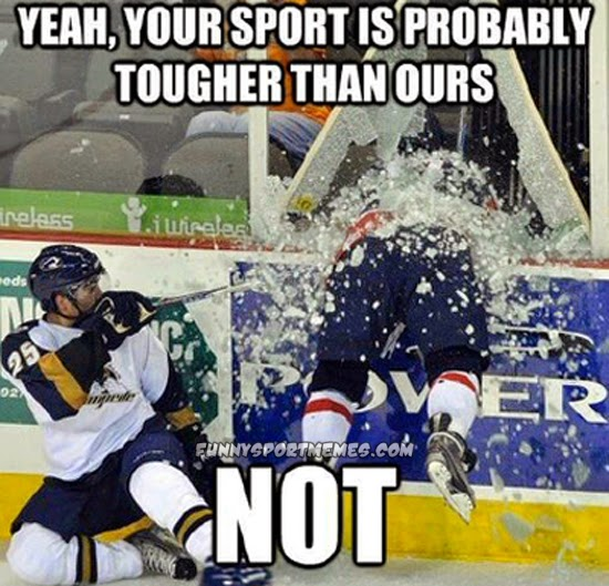 Other Team Sports: 45 Very Funny Hockey Meme Pictures And Images
