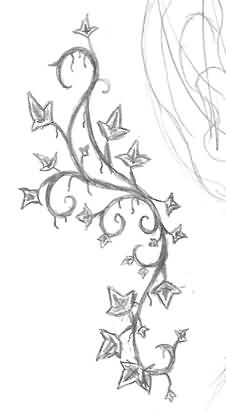 18 latest ivy tattoo designs and ideas rh askideas com ivy vine tattoo flash ivy vine tattoo on the thigh