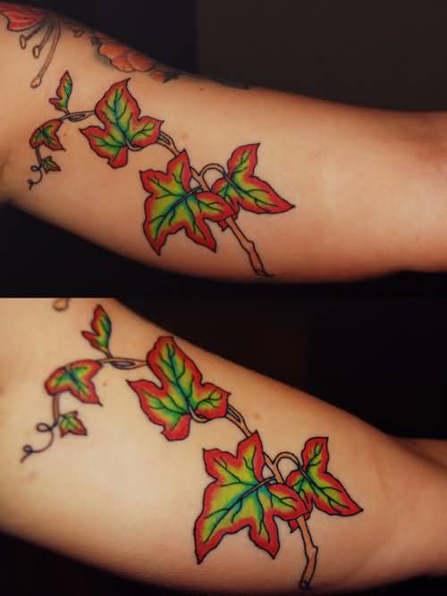 29 awesome ivy tattoos