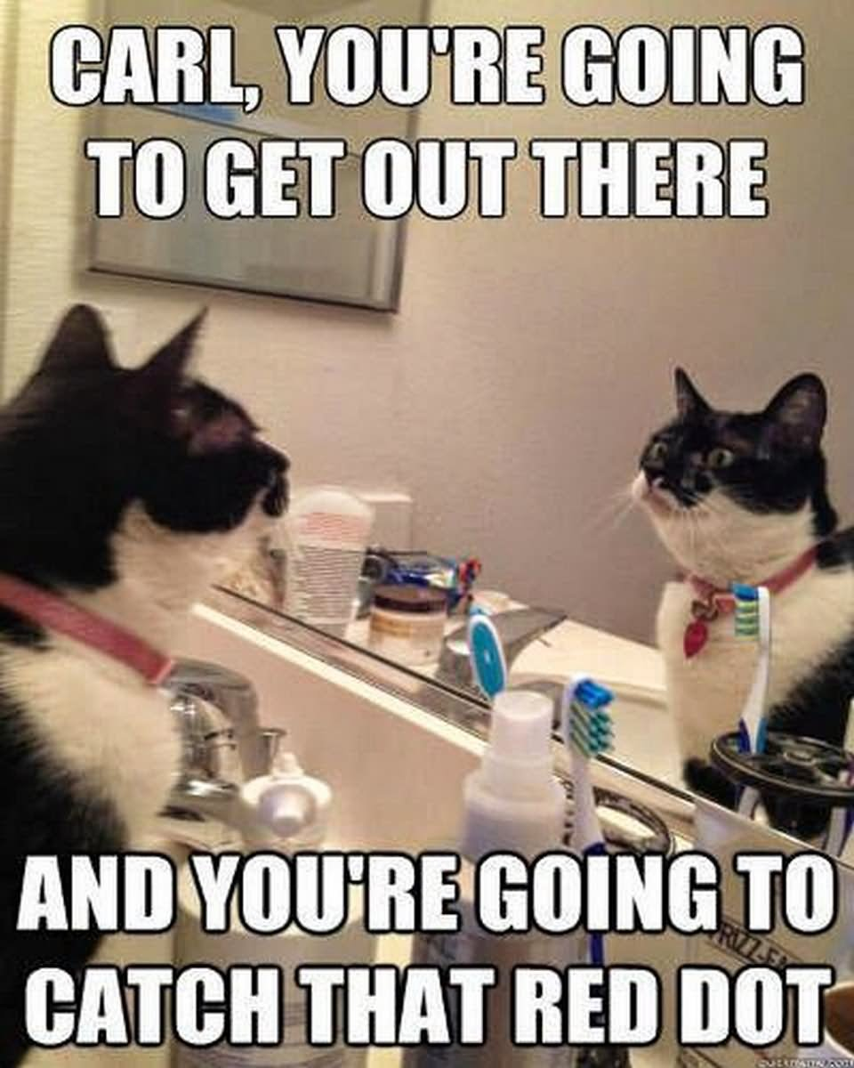 Carl You Are Going To Get There Funny Amazing Meme Picture carl you are going to get there funny amazing meme picture
