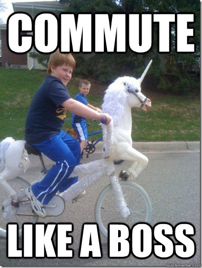 Funny Like A Boss Meme : Like a boss meme funny pixshark images