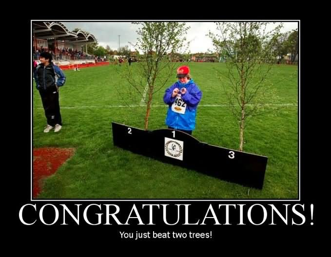 congratulations you just beat two trees funny meme poster