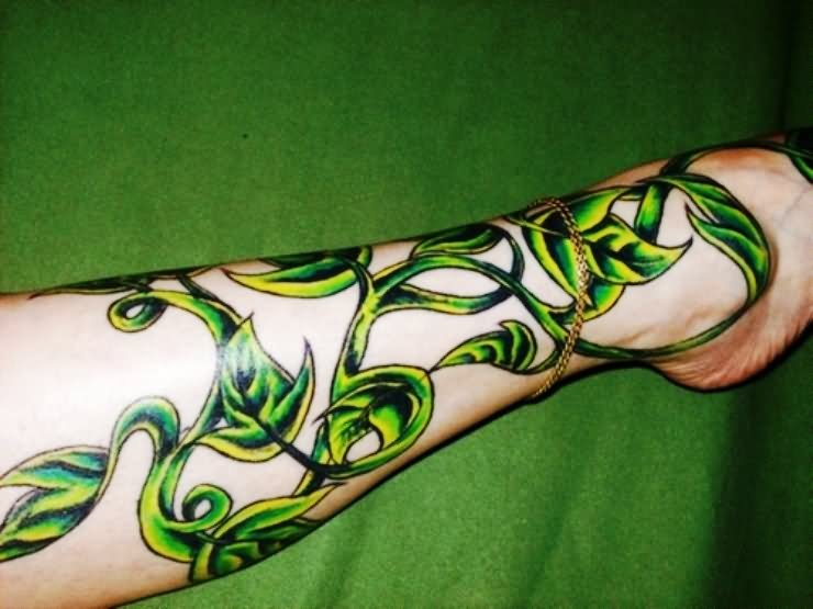 ce2b8a068 Fantastic Ivy Vine Tattoo Design For Men Forearm
