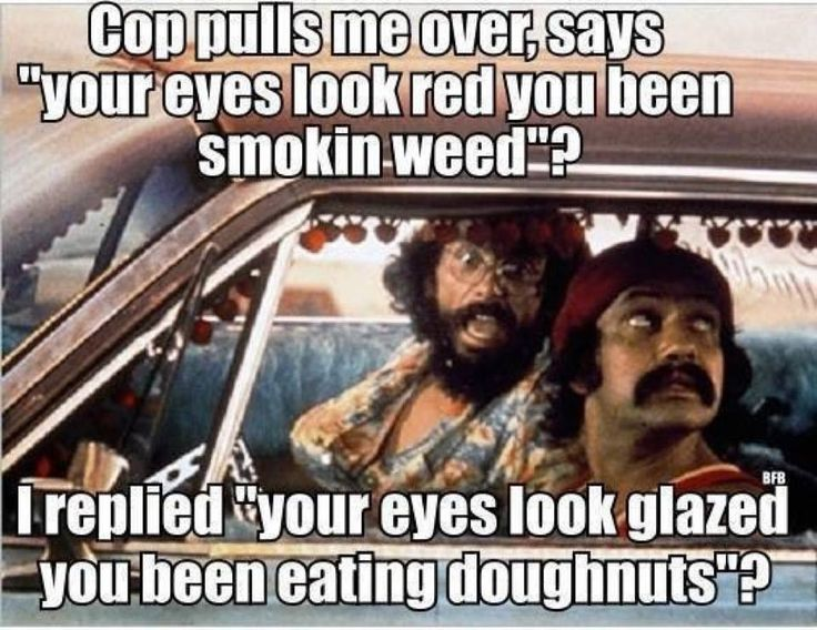 Funny Meme For Cops : Most funny cop meme pictures and images