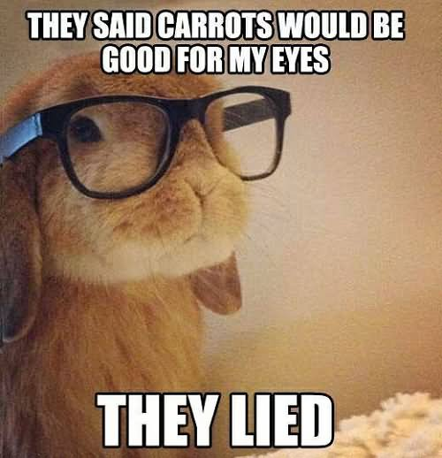 Funny Glasses Meme They Said Carrots Would Be Good For My Eyes Picture