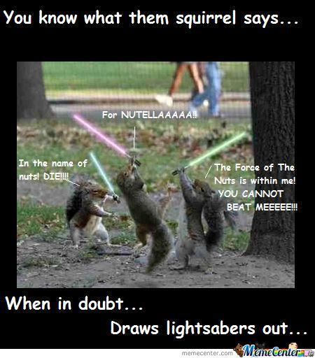 35 Very Funny Squirrel Meme Pictures And Images