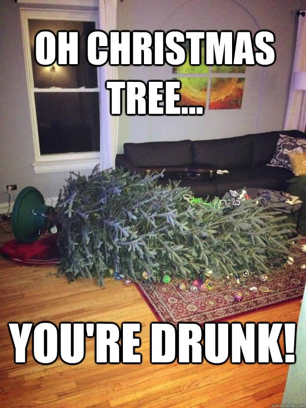Funny Christmas Tree Meme : Most funniest tree meme pictures and photos