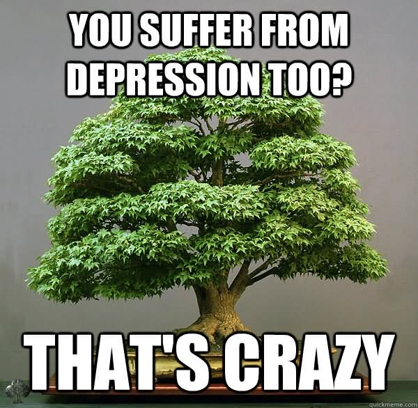 Funny Tree Meme You Suffer From Depression Too Thats Crazy Photo 30 most funniest tree meme pictures and photos,Depressed Drunk Meme